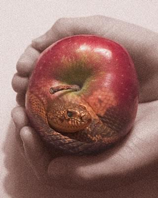 snakeapple