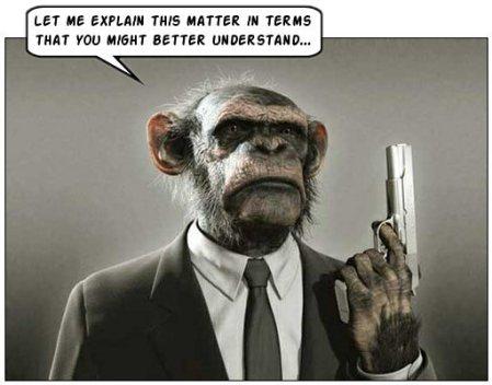 ChimpanzeeAttorney